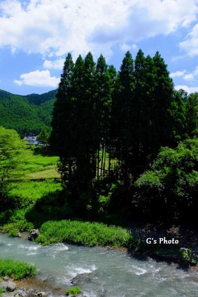 入間川20200719
