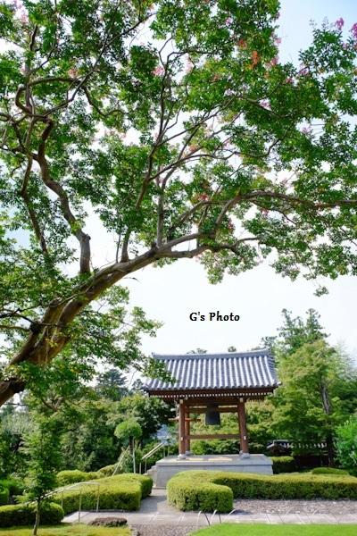 能仁寺220200805