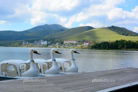 6180095 湖畔のスワンボート