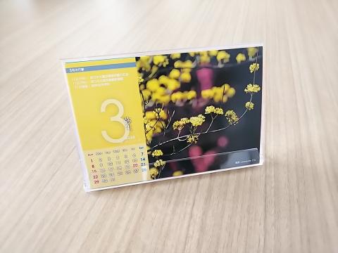鎌倉todayカレンダー