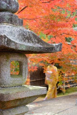 6551078 石灯籠と紅葉