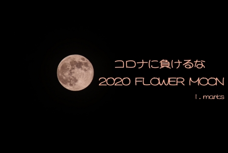 2020_flower_moon.jpg