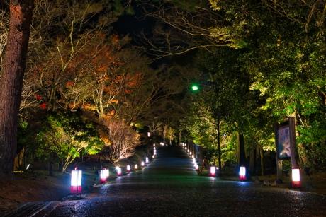 hanatouro_22.jpg