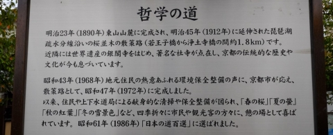 s-20年10月10日 (5)