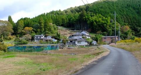 s-tuika (3)