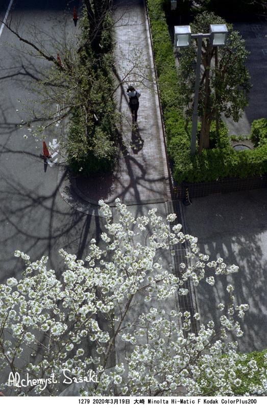 春の墓参り1279-15