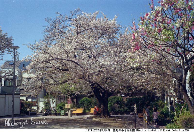 小さな公園1279-37