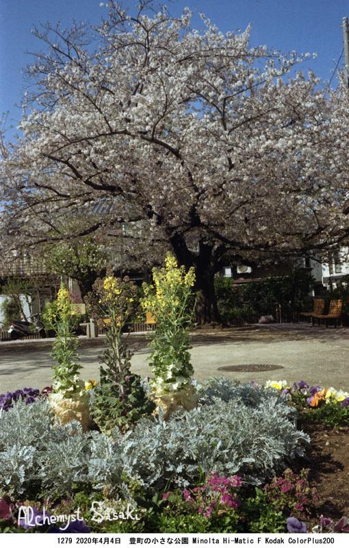 小さな公園1279-38