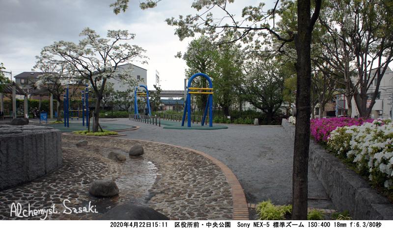 中央公園DSC06042