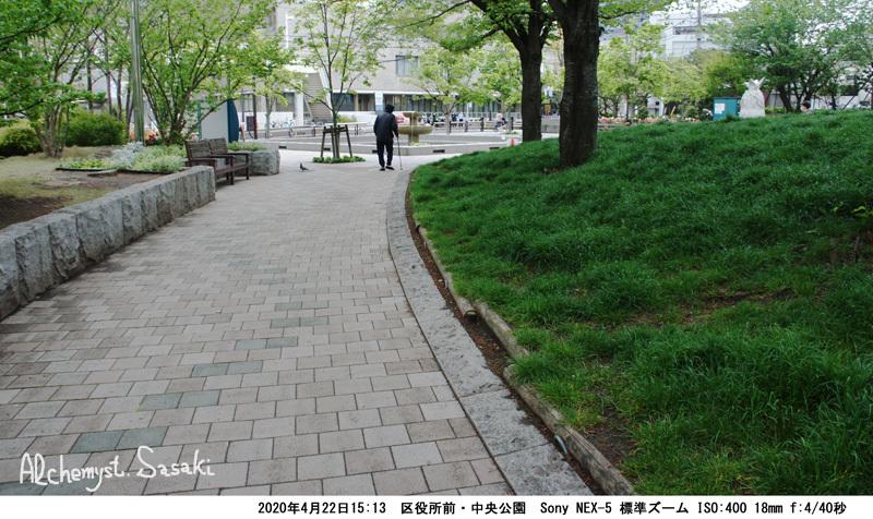中央公園DSC06043