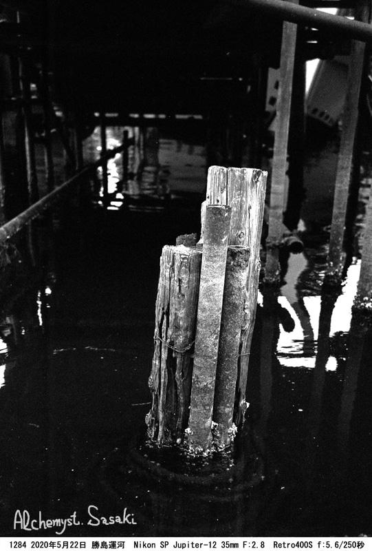 勝島運河1284-10 Ⅱ