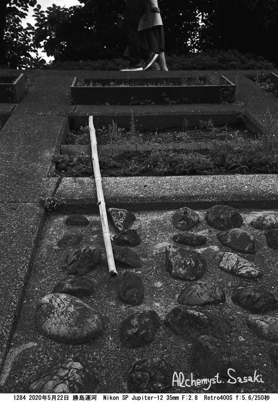 勝島運河1284-12 Ⅱ