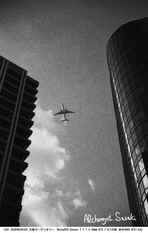 赤外フィルム1301-28