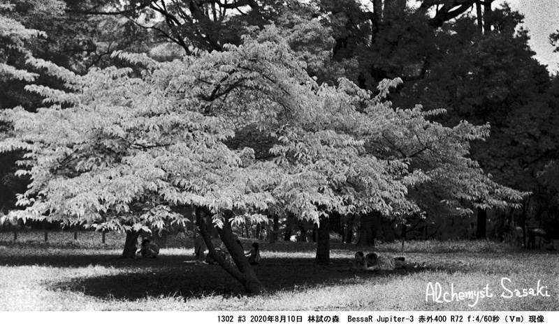林試の森1302#3-2