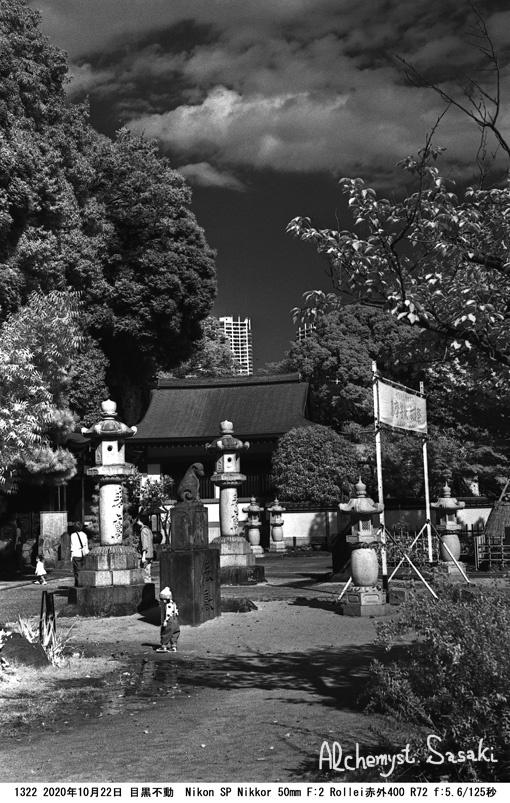 桐ヶ谷散歩1322-19
