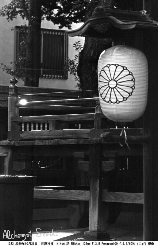 荏原神社1323-39