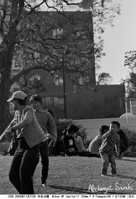 晩秋の中央公園1328-20