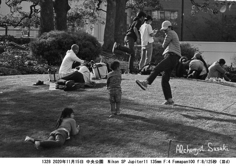 晩秋の中央公園1328-21