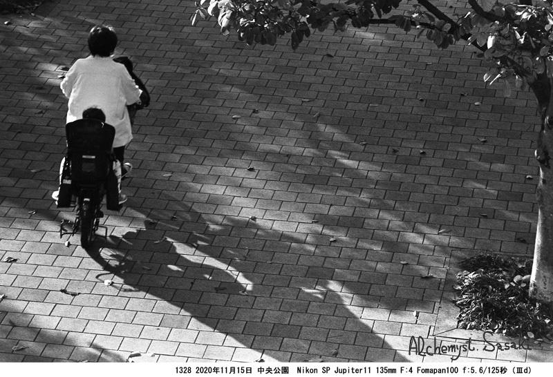 晩秋の中央公園1328-25