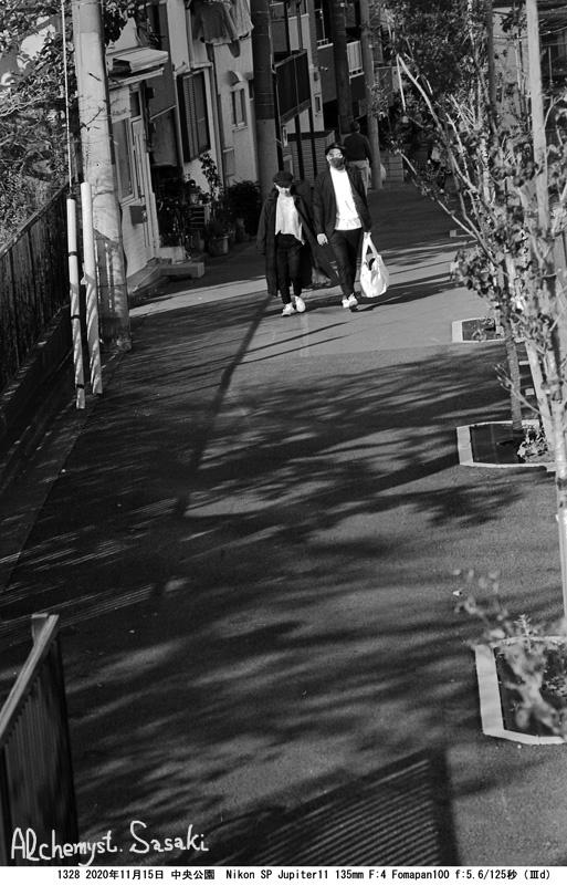晩秋の中央公園1328-26