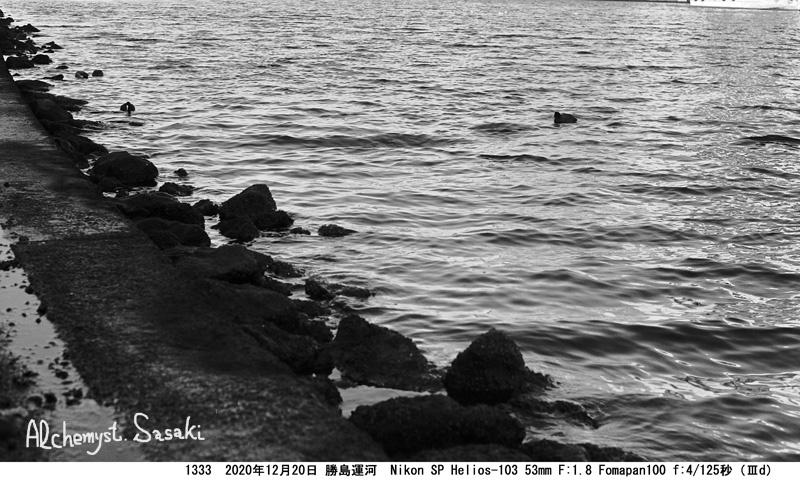勝島運河まで1333-24