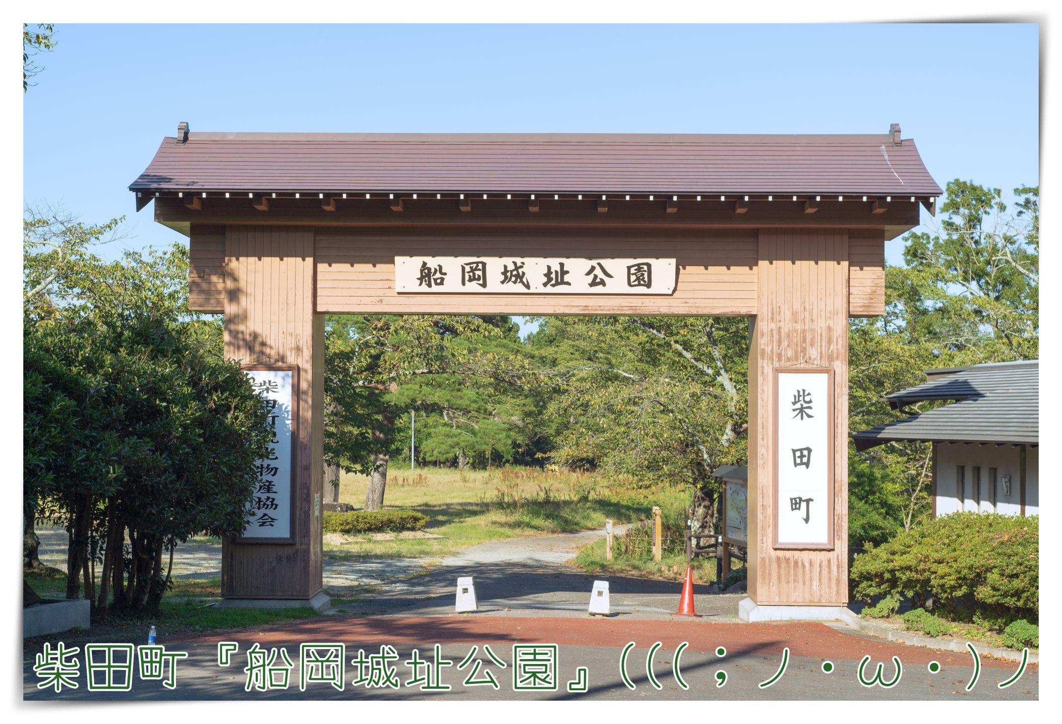 200828_24.jpg