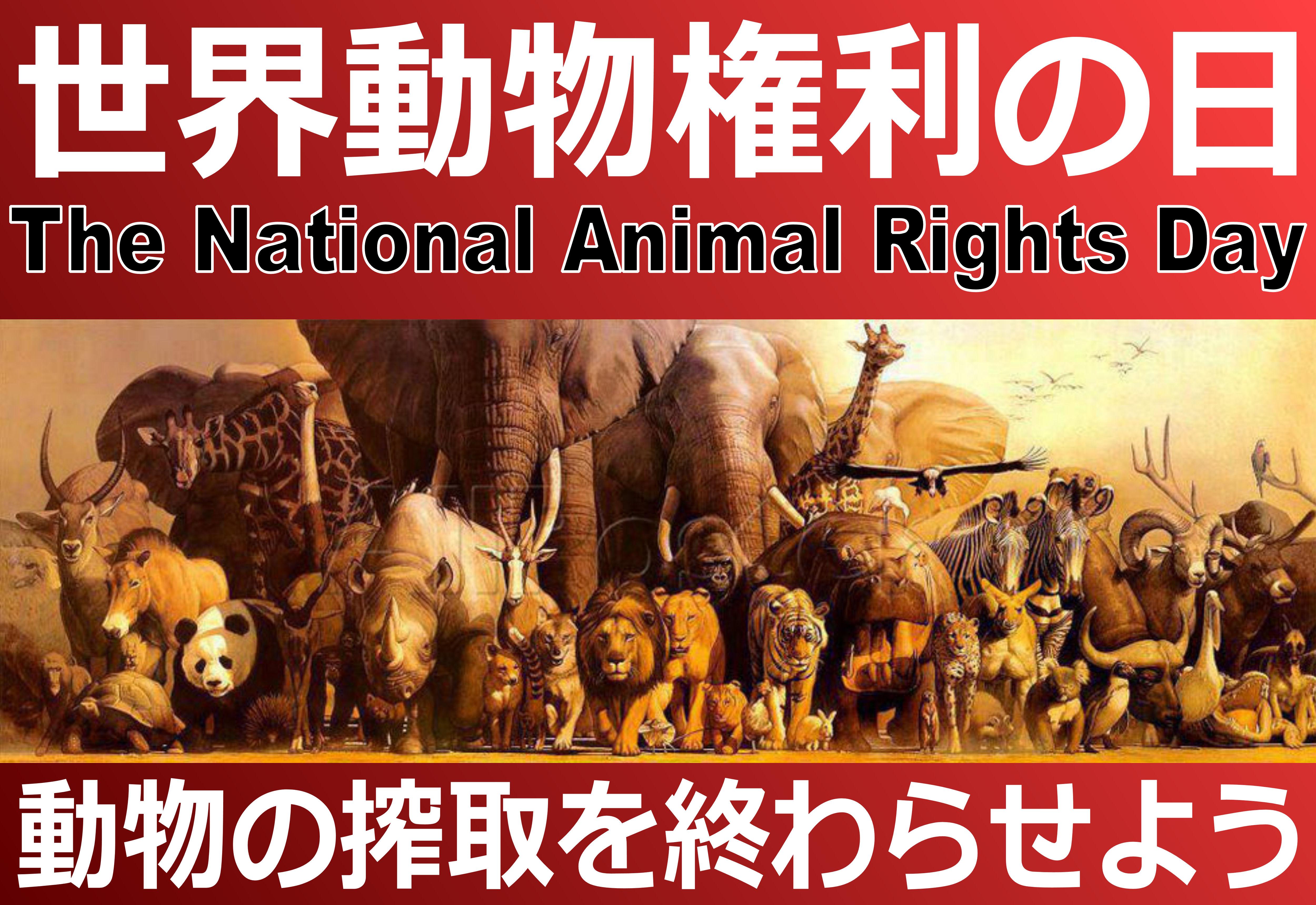 animalrightsday4.jpg