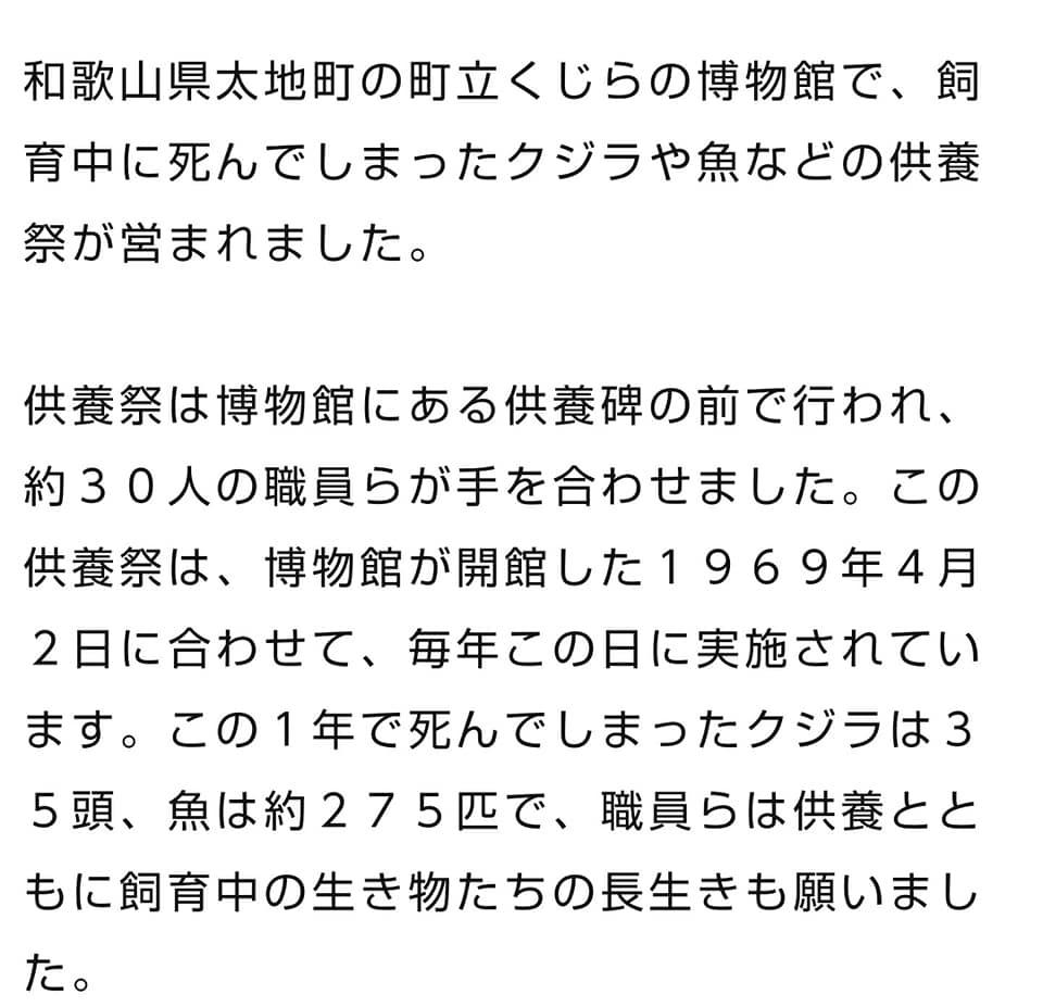 kujiragisei2020news2.jpg