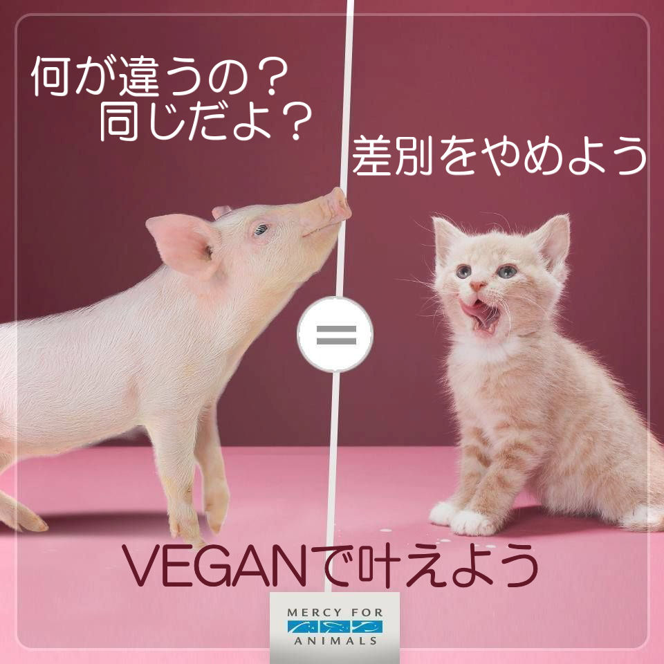 vegananimals6a.jpg