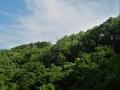 緑の北斜面