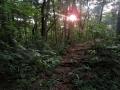 落日の山道