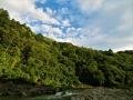 森と空と川