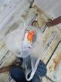 IMG_0018_20200418085936cb4.jpg