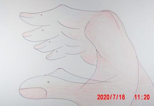 え4016