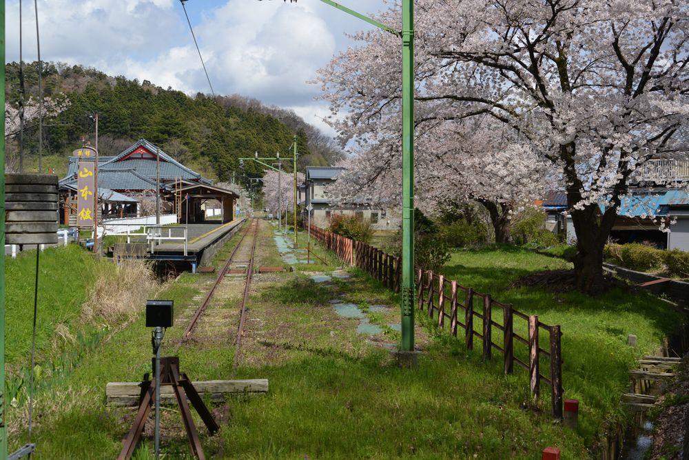 桜と駅と踏み切り-1