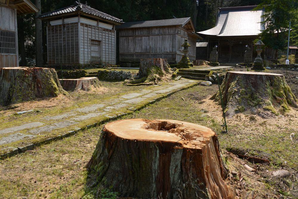 升箕神社-5