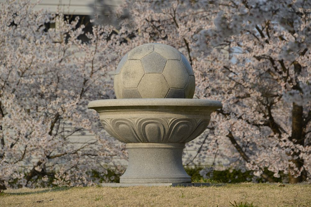 サッカーと桜-2