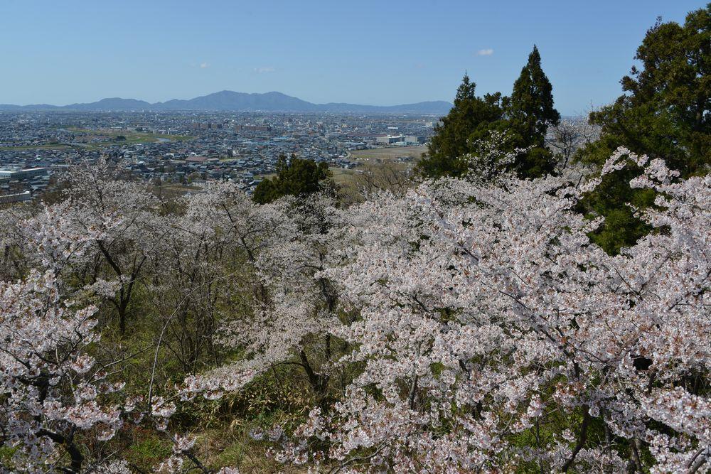 大崎山展望台-4