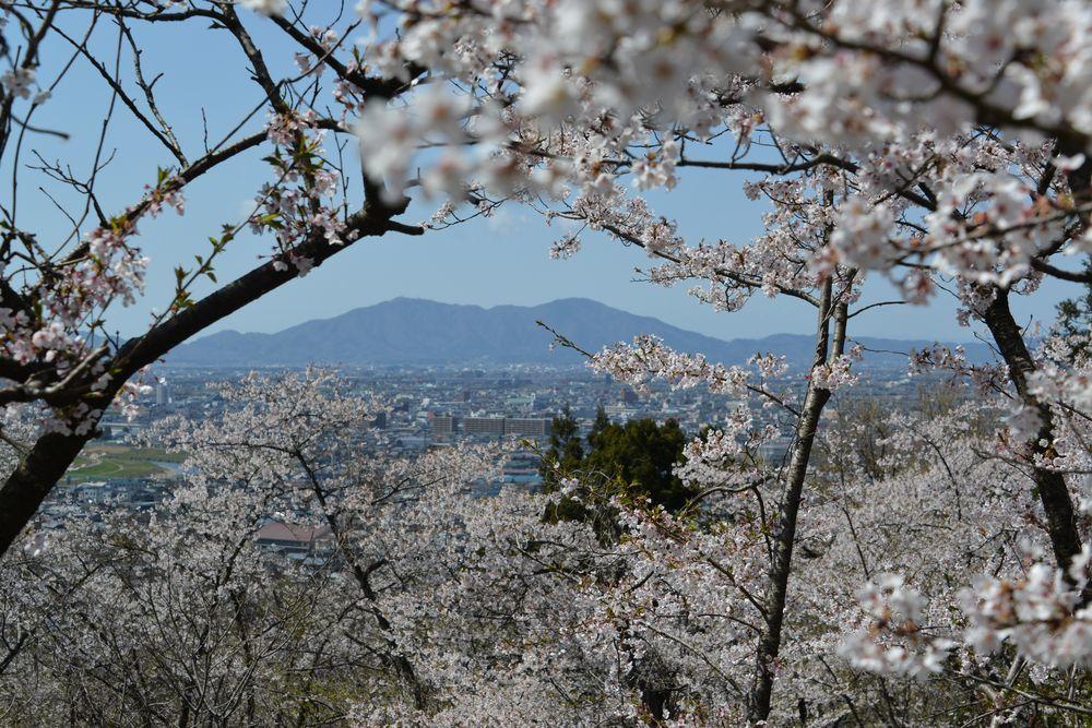 大崎山展望台-5