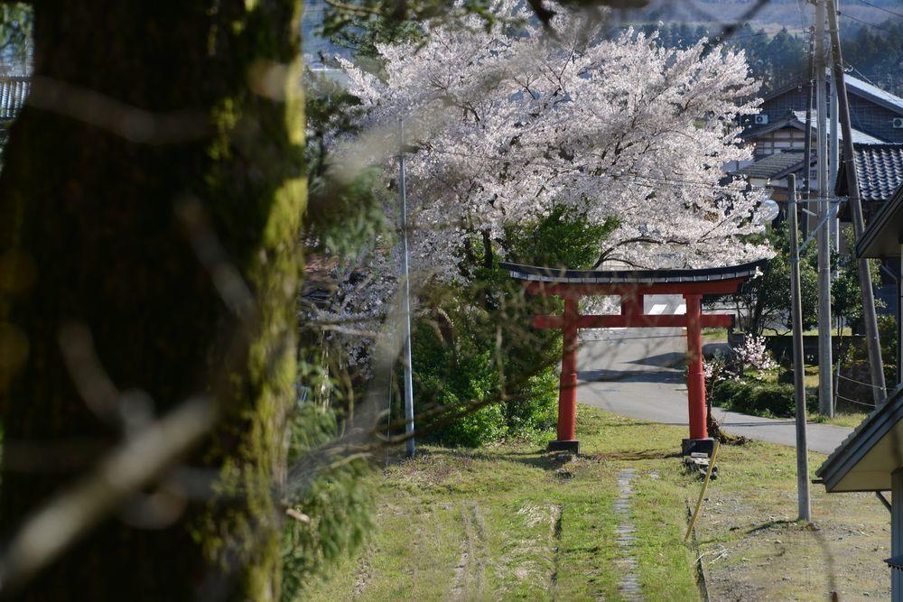 五十嵐神社-5