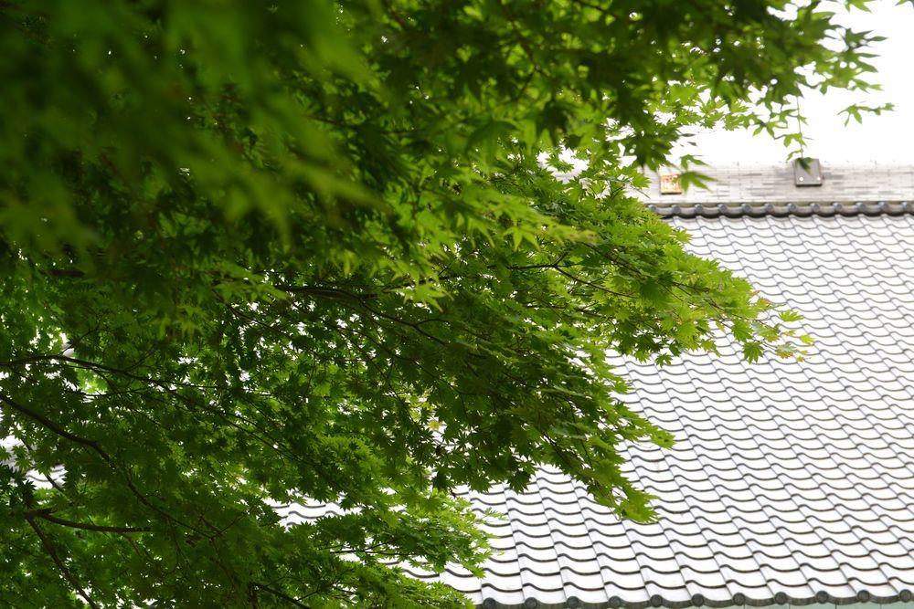 寺と神社-3