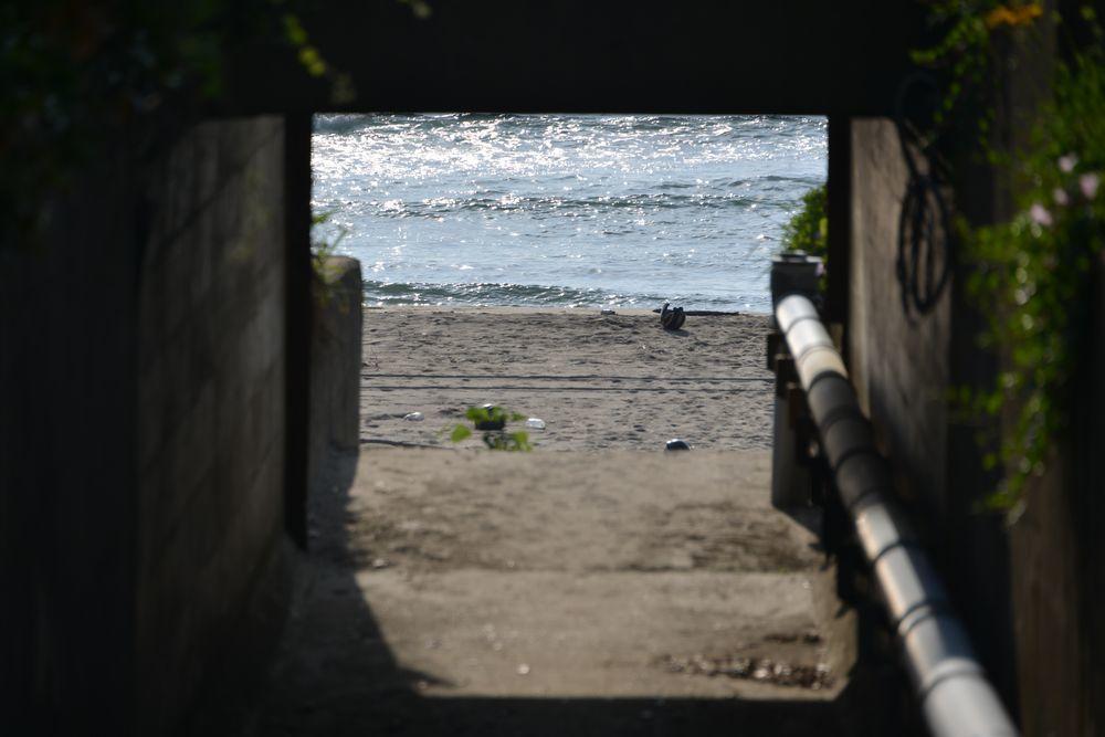 海岸へ-1