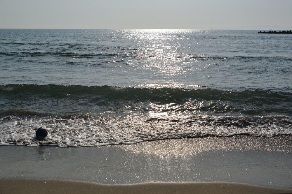海岸へ-6