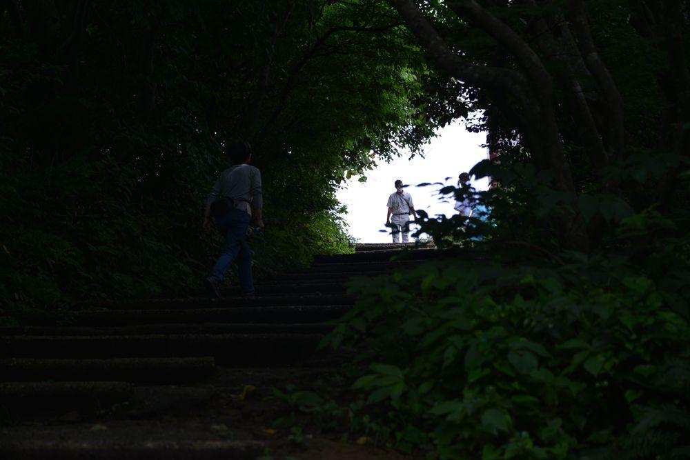 弥彦神社の奥社-2
