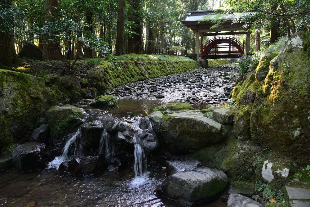 真夏の神社-1
