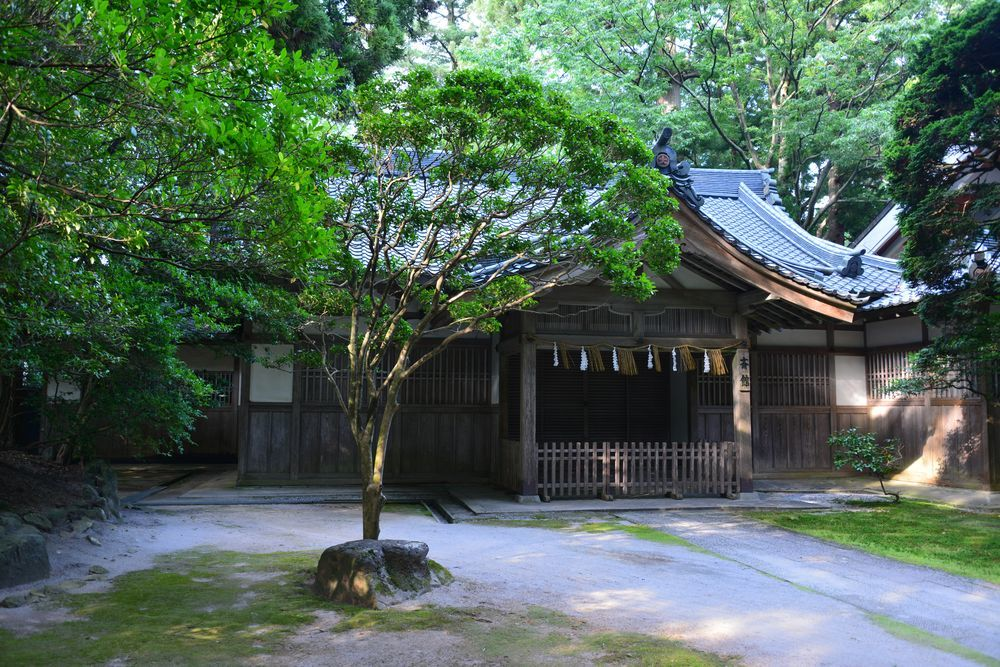 真夏の神社-6