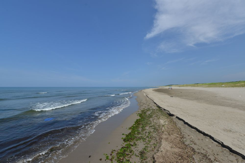 夏の海岸-5