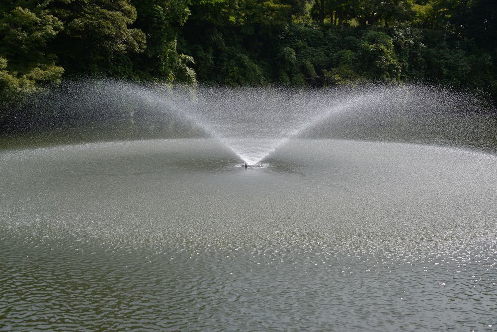 高岡城跡公園-4