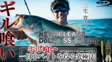 琵琶湖「ギル喰い」SSギル