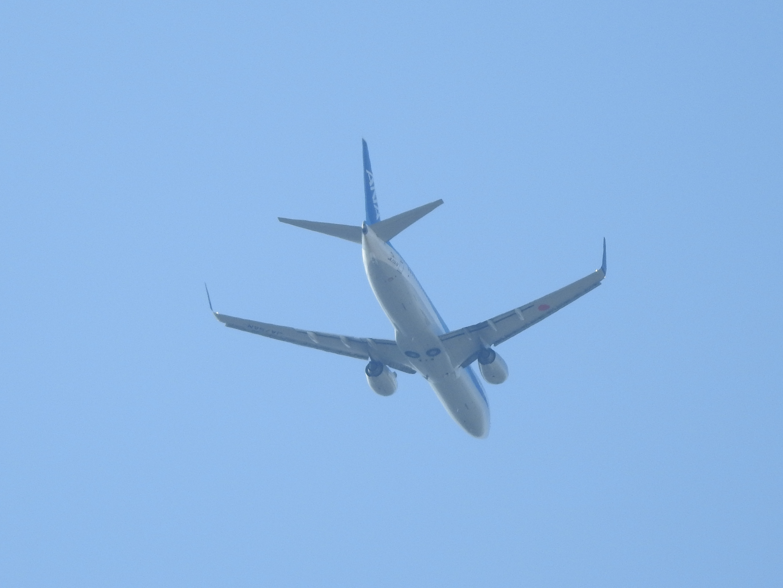 B737自宅上空